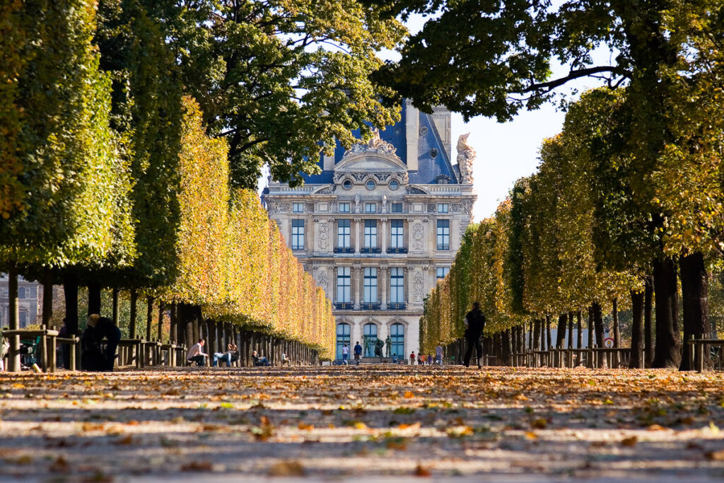 A tree-lined avenue in the Tuileries garden in front of the Louve Museum. Paris, France.